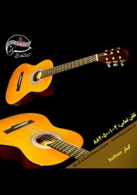 گیتار hofner