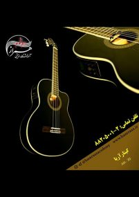 گیتار-آریا-AK-30-2